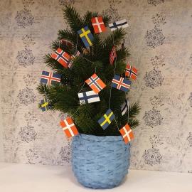 Flaggirland Norden